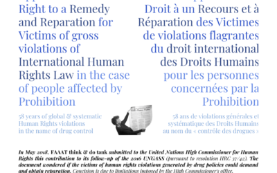Application of the Right to a Remedy and Reparation for Victims of gross violations of International Human Rights Law in the case of people affected by Prohibition