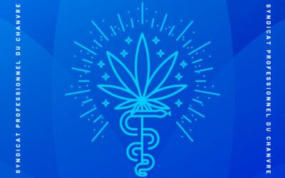 Livre blanc. Cannabis thérapeutique en France: Quelle régulation pour les patients ?